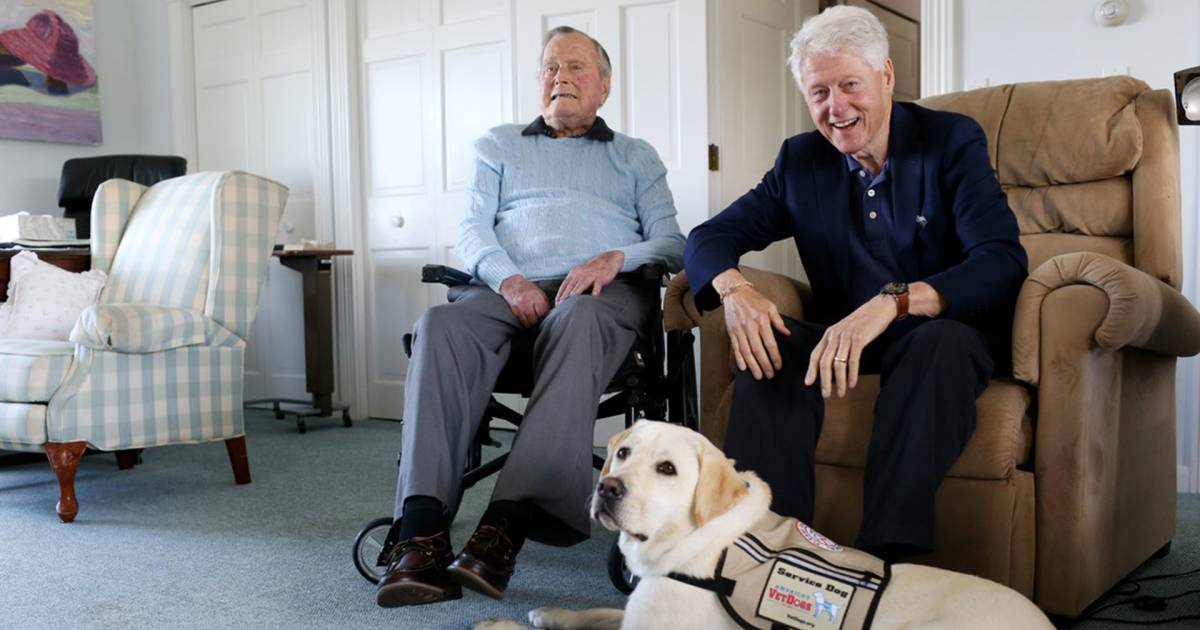 Former President George H.W. Bush welcomes new family member: Sully the dog