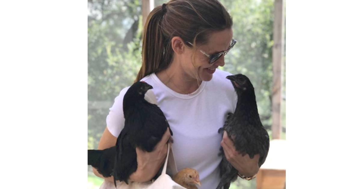 Jennifer Garner celebrated her chickens' birthday with a one-of-a-kind cake