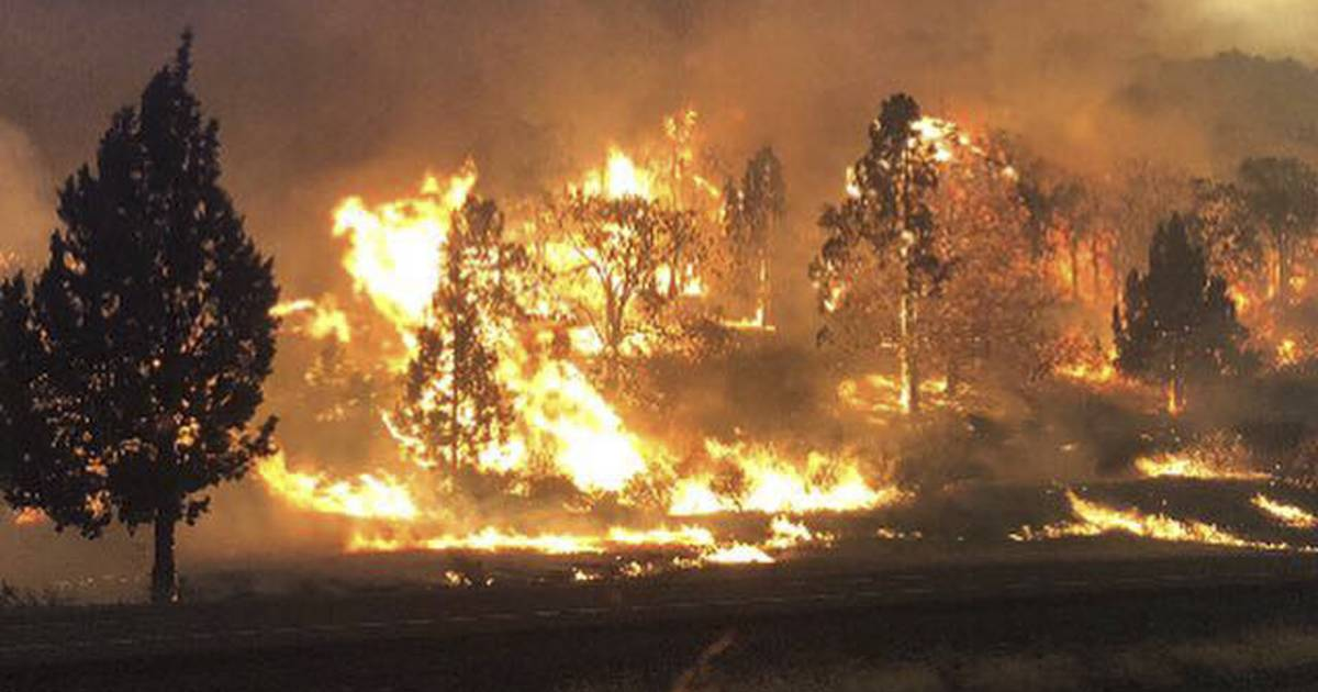 One person dead as new wildfires sweep through California, burning homes