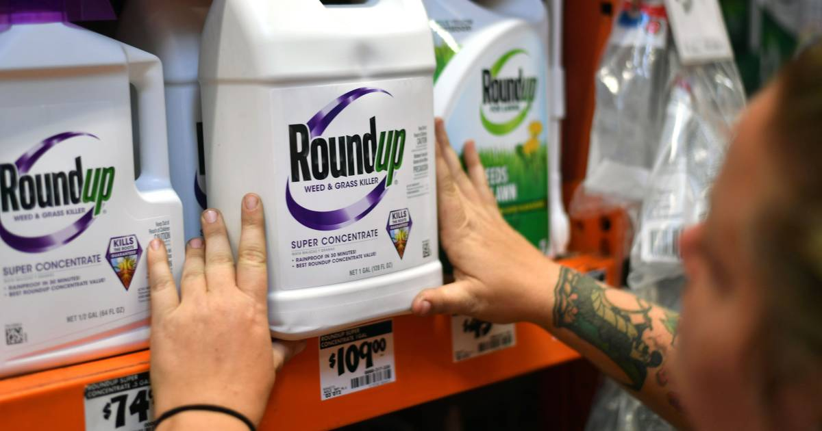 Jury orders Monsanto to pay $290M in Roundup trial