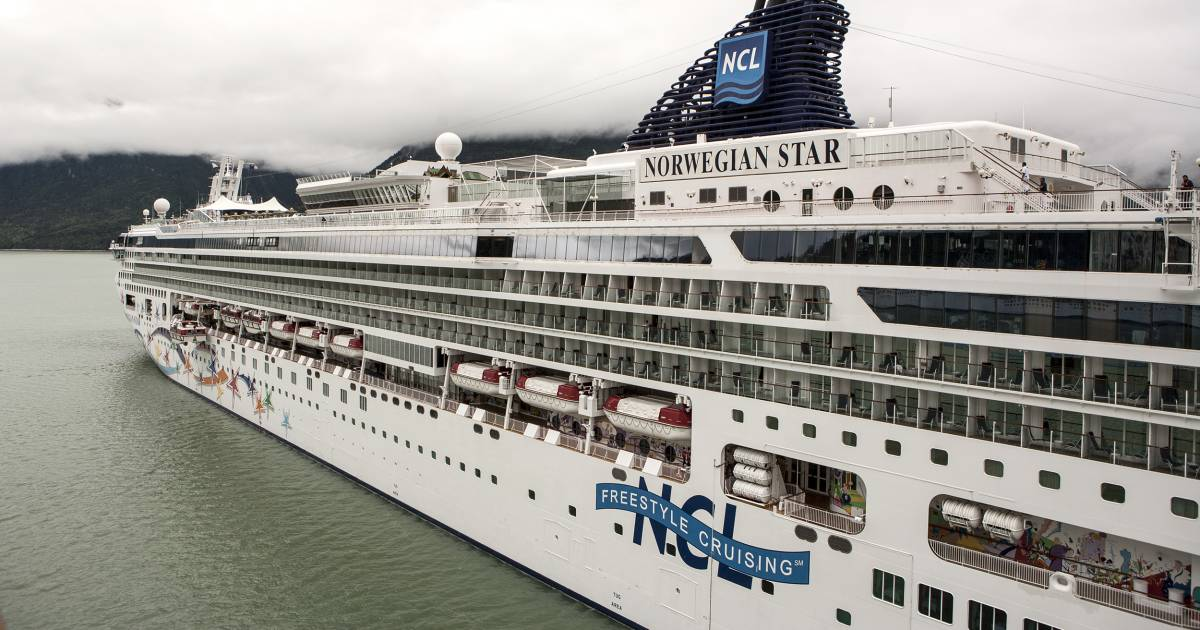 Cruise ship passenger survives 10 hours after falling into Adriatic Sea (nbcnews.com)