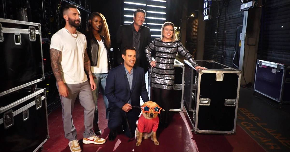 'The Voice' gets a special visit from TODAY's puppy with a purpose, Sunny