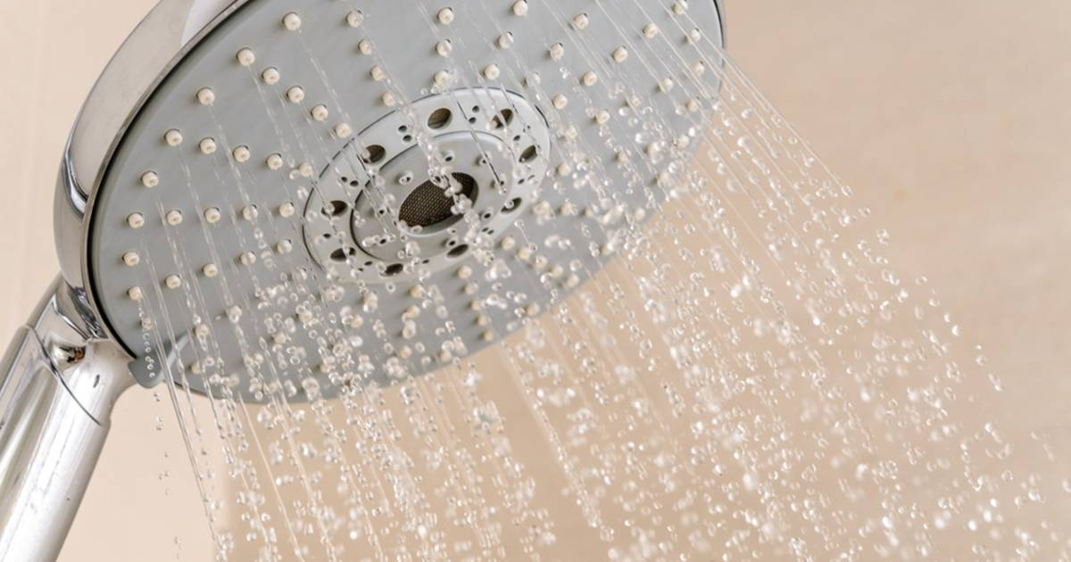 Best Way To Clean Shower Grout Mold