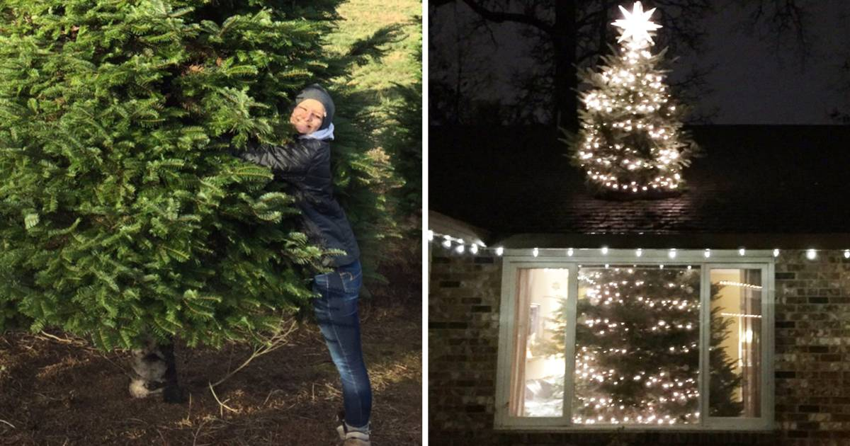 This Crazy Christmas Tree Trend Is Through The Roof