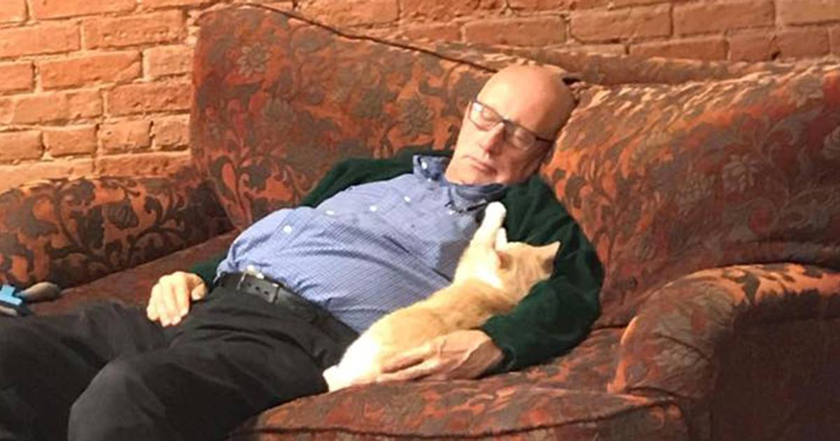 Volunteer helps raise money for pet shelter ... by napping with cats