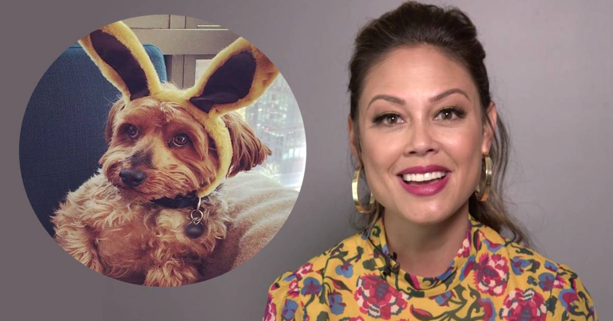 Why Vanessa Lachey says her 11-year-old dog is her family's 'first born'