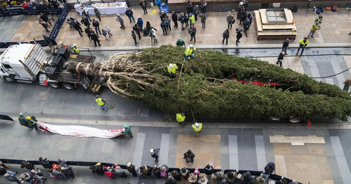 2018 Rockefeller Center Christmas Tree Arrives For Holiday