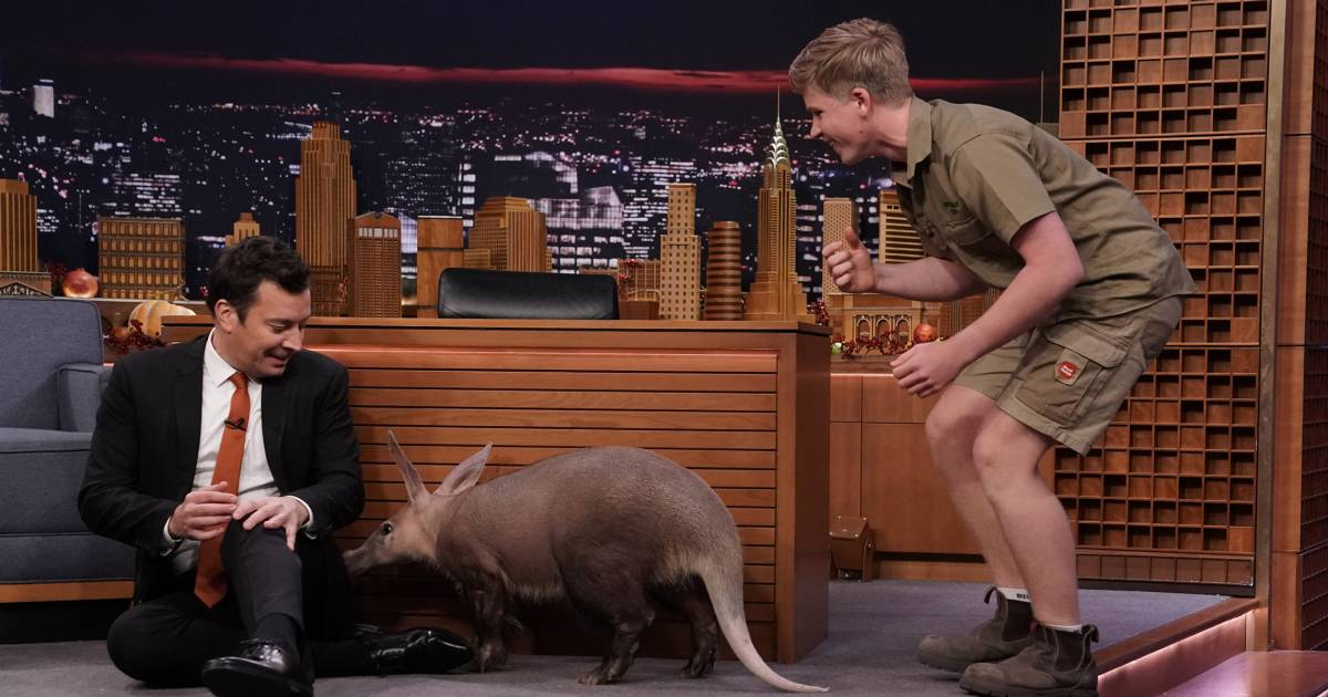 See Jimmy Fallon's hilarious reaction to meeting Robert Irwin's animals