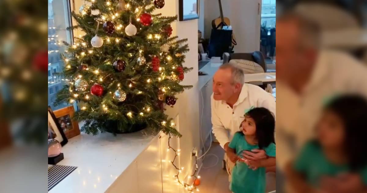 'Santa! Santa! Santa!': Watch Hoda and Haley Joy light family Christmas tree