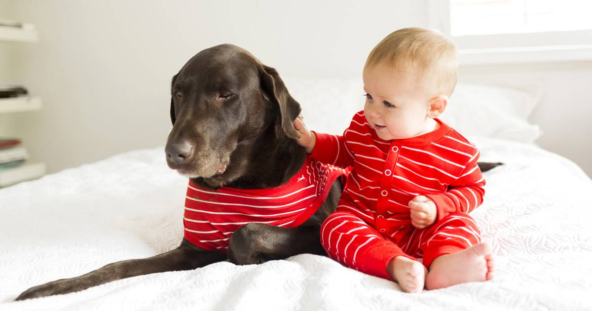 Dog pajamas allow owners to curl up with their pets in matching outfits