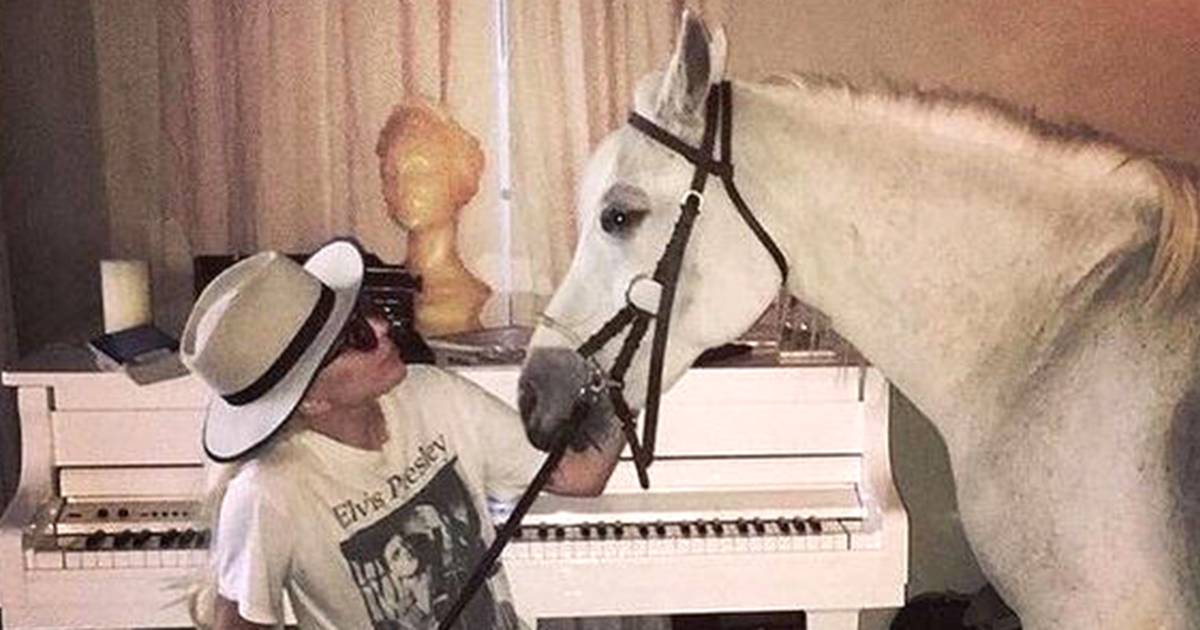 Lady Gaga leaves Critics' Choice to be with her dying horse, Arabella