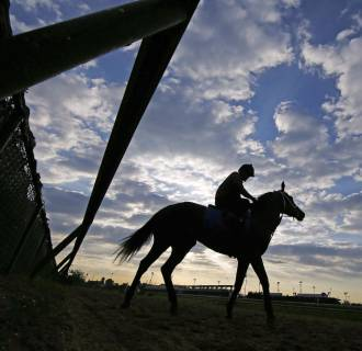 Image: A horse goes for a morning workout at Churchill Downs in Louisville on Saturday ahead of the 104th running of the Kentucky Derby.