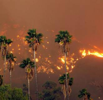 Image: A wildfire burns near Glendora, Calif., on  Jan 16, 2014.