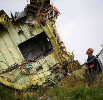 Image: A Malaysian air crash investigator inspects the crash site of Malaysia Airlines Flight MH17, near the village of Hrabove