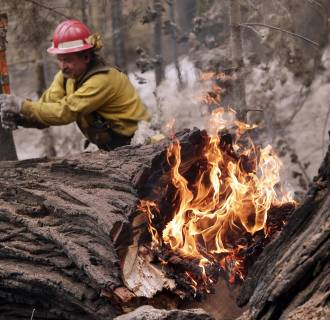 Image: Tracy Porter, of Paradise, Calif., uses an ax to fragment a burning tree damaged by the Eiler Fire