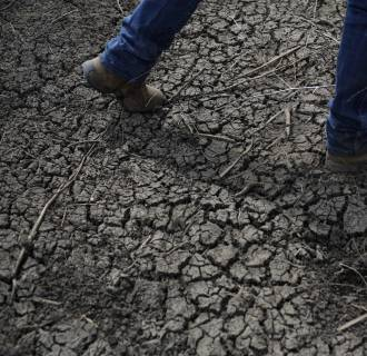 Image: Fourth-generation rice farmer Josh Sheppard walks across the dried-up ditch at his rice farm