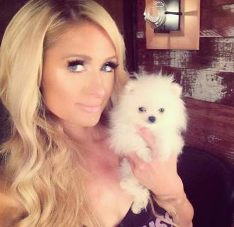 Image: Paris Hilton posted of a picture of herself and her new Pomeranian on Instagram
