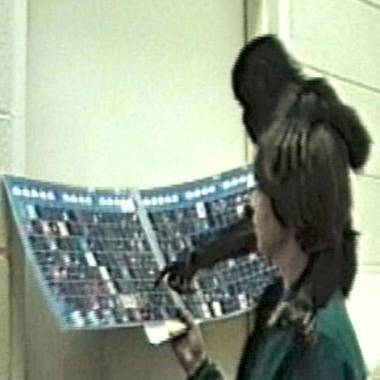 Baby apes and humans teach lessons about evolution of language