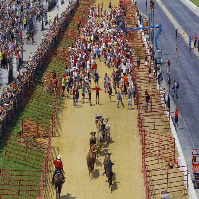 'Exhilarating': 4,000 run from the bulls in US event modeled after Pamplona