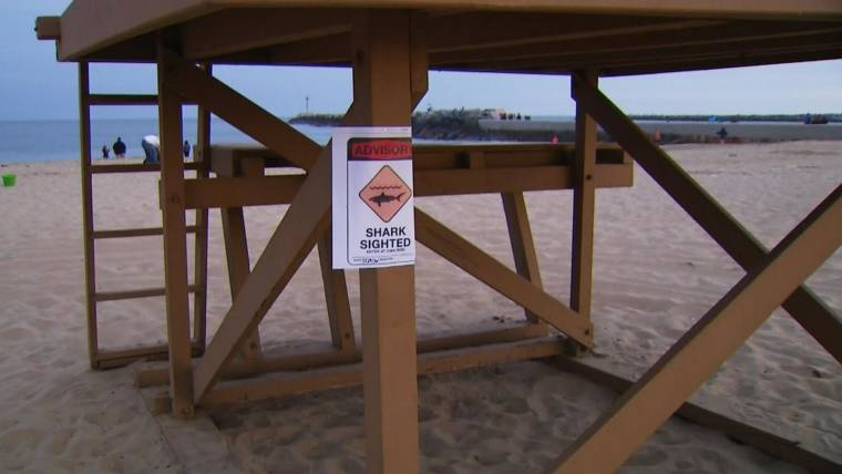Shark Attacks Teen in Neptune Beach, Florida