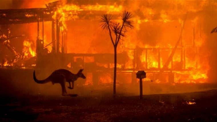 state of emergency declared in parts of australia ravaged by wildfires