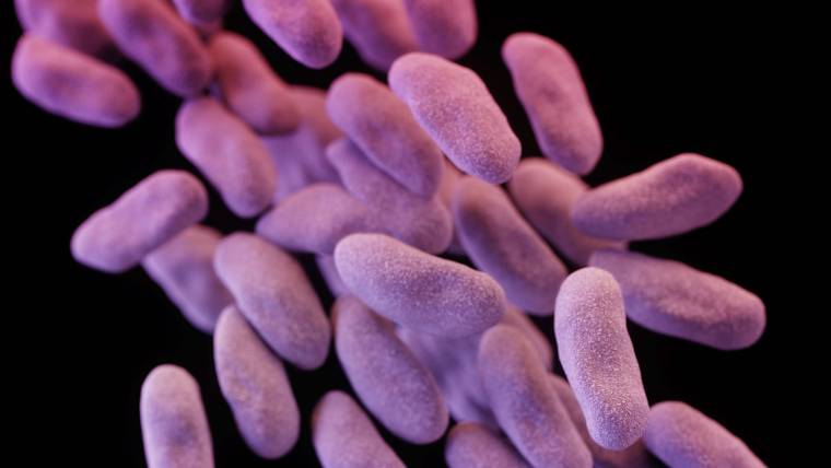Patients Carry Superbugs on Their Hands, Study Finds