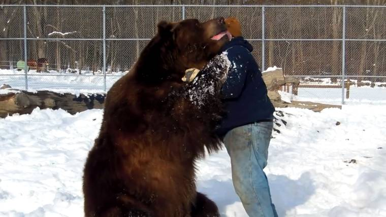Picture of bear hugging man
