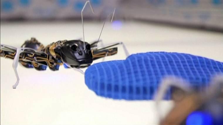 Bionic Animals Mimic Ants, Butterflies and Chameleons