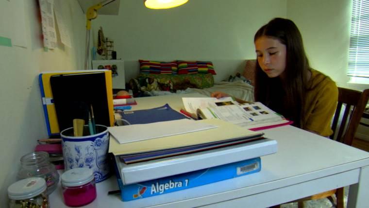 karl taro greenfeld homework