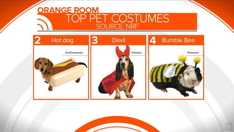 Cute Pet Costumes For Halloween